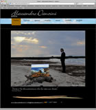 www.alessandrodanzini.it